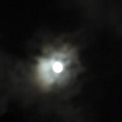 満月🌕 朧月 青白い月が綺麗