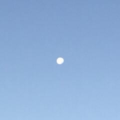 いま空 今朝の月
