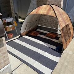 おうちピクニック/おうち時間/暮らし 外出自粛中のため、 自宅の敷地内でおうち…