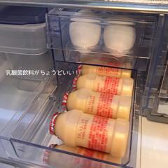 冷蔵庫整理/冷蔵庫収納/冷蔵庫 卵の下は乳酸菌飲料の定位置!