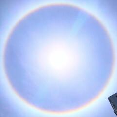 """自然現象/空/奇跡の一枚/奇跡/太陽/お天気/... 太陽の輪🌈🌞…れい  """"わ""""  だけに…"""
