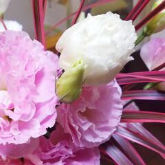 暮らし/LIMIAファンクラブ/LIMIAな暮らし お友だちからお花いただきました。  花も…