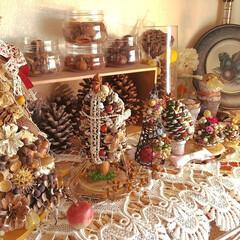 ツリー/クリスマス/木の実/ダイソー/セリア/ハンドメイド/... ♡ツリー大小  『背の順にならんでみまし…