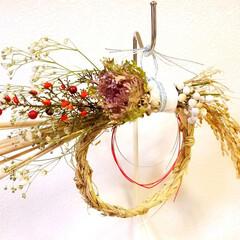 正月飾り/手作り/ハンドメイド/カスミソウ/ナンキンハゼ/葉牡丹/... お正月飾り作りました。  リースの土台⁉…
