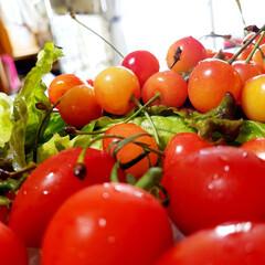 ミニトマト/さくらんぼ/雨季ウキフォト投稿キャンペーン/令和の一枚/フォロー大歓迎/LIMIAファンクラブ/... 冷蔵庫の中から 赤いま~るい子達🍅🍒………