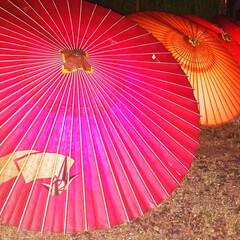 奈良イベント/おでかけ/朱色 奈良・明日香村・岡寺 光の回廊✴️  和…