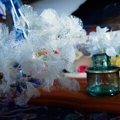 雑貨/ハンドメイド/おでかけ/暮らし/クリスマス2019/手作り/... 昨日、家の近くを散策してたら、完全に終わ…
