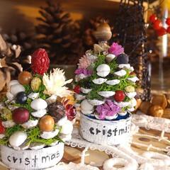 ツリー/木の実/ハンドメイド/雑貨/ドライフラワー/クリスマス/... ♡ミニぼっくりツリー  材料がそろってる…
