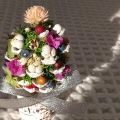 ツリー/クリスマス/セリア/ハンドメイド/雑貨/ナチュラル/... ♡ぼっくりツリー  🎄松笠の各先端にスノ…