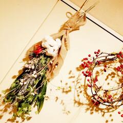 ナンキンハゼ/手作り/クリスマス/ドライフラワー/スワッグ/リース/... 余った材料でクリスマススワッグも作ってみ…