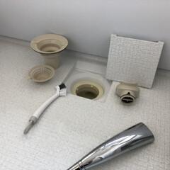 排水口掃除/お風呂掃除/暮らし 排水口はパーツを一つ一つ洗っています♪ …