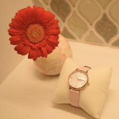 おしゃれ/腕時計好き/腕時計/リアクレア/雑貨 リアクレアの腕時計♡  上品な時計盤と、…