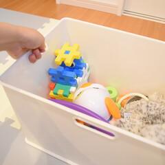 カラーボックス用収納ボックス インボックス Lサイズ SQB-L 日本製 収納ボックス 収納ケース 小物収納 ボックス ケース(小物収納、小物入れ)を使ったクチコミ「ぬいぐるみ収納🧸❤️  インボックスは取…」