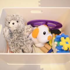 カラーボックス用収納ボックス インボックス Lサイズ SQB-L 日本製 収納ボックス 収納ケース 小物収納 ボックス ケース(小物収納、小物入れ)を使ったクチコミ「ぬいぐるみ収納🧸❤️  ぬいぐるみ収納に…」(1枚目)
