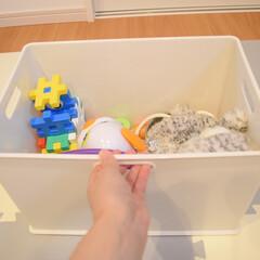 カラーボックス用収納ボックス インボックス Lサイズ SQB-L 日本製 収納ボックス 収納ケース 小物収納 ボックス ケース(小物収納、小物入れ)を使ったクチコミ「ぬいぐるみ収納🧸❤️  このインボックス…」