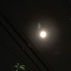 月/夜空 皆さんの投稿を見て 空を見上げてみました…(1枚目)