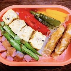 カラフル弁当/LIMIAごはんクラブ/お弁当/フォロー大歓迎/節約 今日のおべんと。  ・6色弁当🌈 ・餃子…