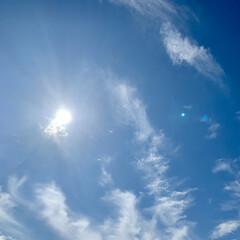 青空/いま空 こんにちは🧸☀️  今はよく晴れて太陽が…