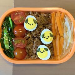 手抜き弁当/LIMIAごはんクラブ/お弁当/ビビンバ 今日のおべんと。  ・ビビンバ丼🐶 (ニ…
