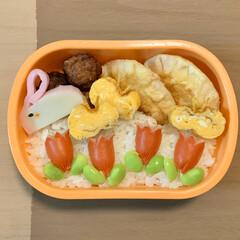 餃子の皮アレンジ/春のお弁当/デコ弁/LIMIAごはんクラブ/お弁当/節約 久しぶりに今日のおべんと。  ・ミートボ…(1枚目)