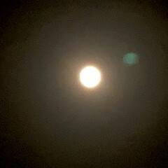中秋の名月/十五夜/満月/いま空/空 こんばんは🧸🌕  十五夜ですね。皆さんも…(1枚目)