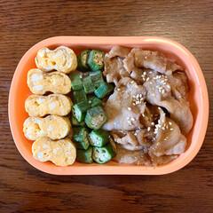 フォロー大歓迎/のっけ弁/寝坊弁当/生姜焼き弁当/LIMIAごはんクラブ/お弁当 今日のおべんと。  ・タモリさんの生姜焼…