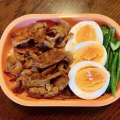yuuさんのレシピ/焼肉弁当/LIMIAごはんクラブ/お弁当/暮らし/フォロー大歓迎 今日のおべんと。  ・豚肉甘辛炒め ・焼…