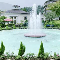 強羅公園/箱根/噴水/涼しげ おはようございます🧸☀️  今日も熱中症…