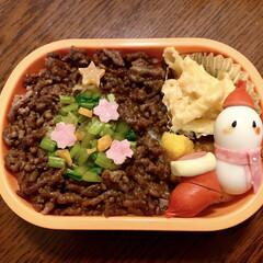 そぼろご飯/LIMIAごはんクラブ/デコ弁/クリスマス2019/リミアの冬暮らし/お弁当/... 今日のおべんと。  ・肉そぼろご飯 ・カ…
