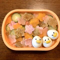 フォロー大歓迎/水玉ちらし寿司/LIMIAごはんクラブ/ピンク/ダイソー/お弁当/... 今日のおべんと。  ・五目ちらし寿司 ・…