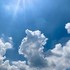 青空/いま空 おはようございます🧸🔆  夏!って感じの…(1枚目)