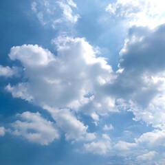 青空/いま空 雨予報から一変。  いーいお天気になりま…(1枚目)
