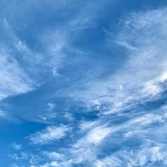 まだまだ夏/空 こちらはいい天気です☀️ 風が強いので雲…