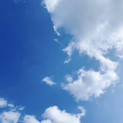 コントラスト/青空/夏の空 ただいまの気温34°☀️  暑い!! 暑…