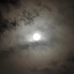 雲が速い/夜空/満月 こんばんは🧸🌙  今日は満月らしいという…