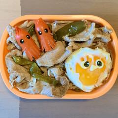豚丼/ソーセー人/LIMIAごはんクラブ/目玉焼き乗っけ/お弁当/節約 今日のおべんと。  ・豚丼(目玉焼きのせ…