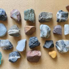 収集癖/小石/散歩 先日の川沿い散歩で拾い集めた小石たちです…(1枚目)