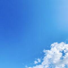 青空/いま空/空 こんにちは🧸☀️  皆さん仰ってますが、…