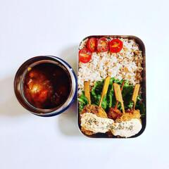 頑張り過ぎないお弁当/カレー弁当/カレー/お弁当/おべんとう ⌘本日のお弁当⌘201905.30⌘  …