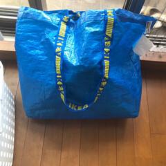 洗濯物/収納アイデア/洗濯ハンガー収納/収納/イケアバッグ/雑貨/... ランドリーハンガーにはIKEAのショッピ…