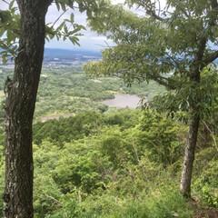 有馬富士/登山/令和元年フォト投稿キャンペーン 標高374メートル。登山家さんからしたら…(5枚目)