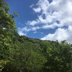 森林浴/散歩/令和元年フォト投稿キャンペーン 新緑の小さな山に怪獣現るみたいな雲(^^)