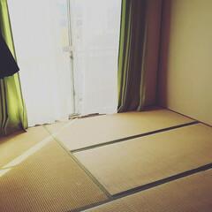 現状回復/DIY/黒歴史/ビフォー画像/賃貸/団地 二階寝室、入居当時。 陽当たり微妙、畳の…
