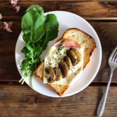 食パン/はじめてフォト投稿 おうちごはん マッシュルームチーズトースト