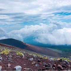 登山/富士山/暮らし/フォロー大歓迎/LIMIAファンクラブ/LIMIA手作りし隊/... 今日の多肉ちゃん🌿 富士山🗻  無事に富…(6枚目)
