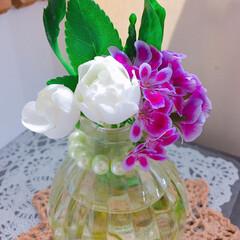 多肉植物寄せ植え/3COINS/花のある暮らし/LIMIA多肉植物/広島たにらー/広島タニラー/... 今日の多肉ちゃん🌿&今日の薔薇🌹  お気…(3枚目)