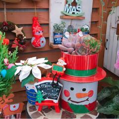 snowman/Christmas/Christmasディスプレイ/100均インテリア/limia多肉クラブ/limiaタニラー/... 今日の多肉ちゃん🌿   100均Snow…