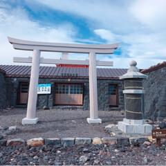 登山/富士山/暮らし/フォロー大歓迎/LIMIAファンクラブ/LIMIA手作りし隊/... 今日の多肉ちゃん🌿 富士山🗻  無事に富…(9枚目)