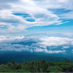 登山/富士山/暮らし/フォロー大歓迎/LIMIAファンクラブ/LIMIA手作りし隊/... 今日の多肉ちゃん🌿 富士山🗻  無事に富…(3枚目)
