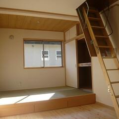 2階畳コーナー/小上り畳コーナー/畳コーナー下部は収納/小屋裏収納/小屋裏収納ハシゴ 2階には小上りの畳コーナー。 畳下は収納…
